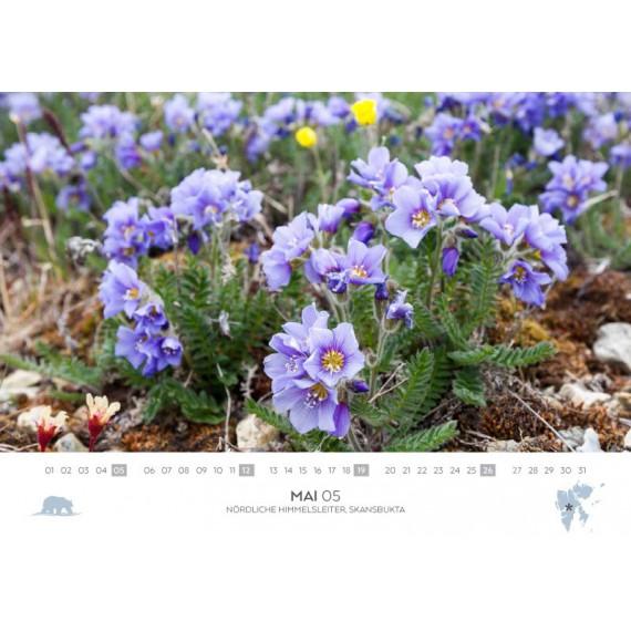 Spitsbergen-calendar 2019