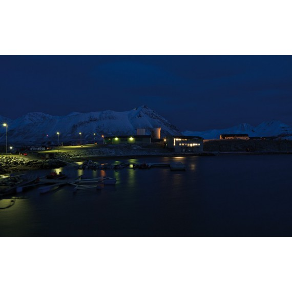 79° N Ny Ålesund - Kongsfjorden - Biota | by Joe Haschek
