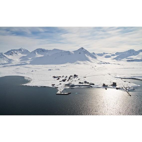 79° N Ny Ålesund - Kongsfjorden - Biota | Joe Haschek