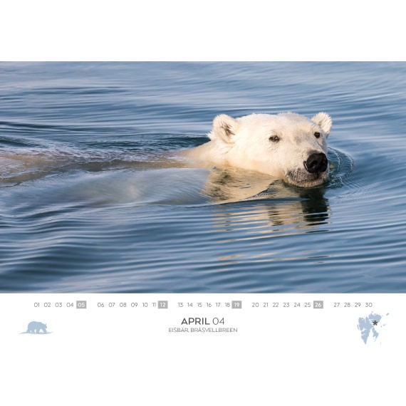Double calendar 2020: Spitsbergen and Antarctica