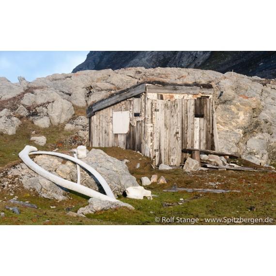 "Buch ""Svalbardhytter"""