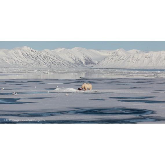 Spitsbergen – Cold Beauty – Photo Book