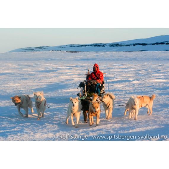 Double presentation Sandra Walser & Rolf Stange, 17.3.: Spitsbergen cruise 125 years ago / dog sledge adventures in Greenland