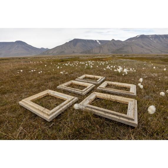 Spitsbergen driftwood picture frame